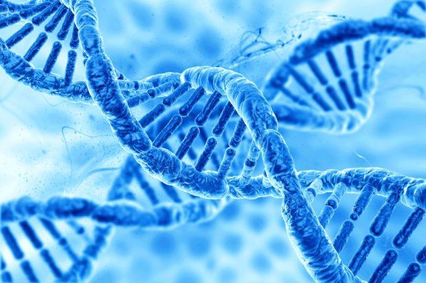 DNA - biometrics
